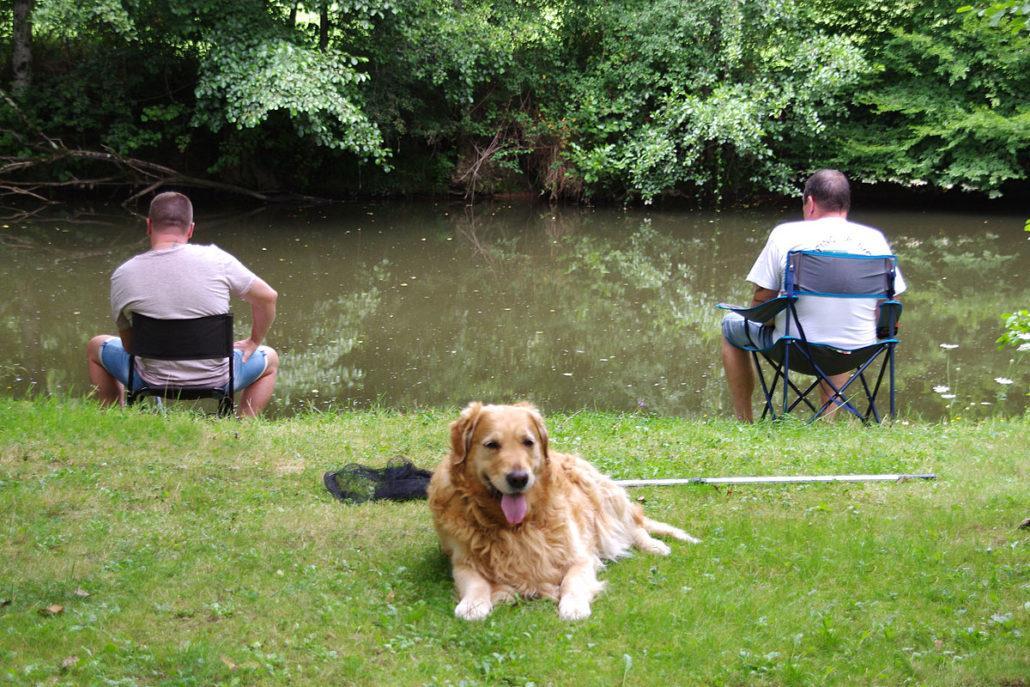 Campeurs entrain de pêcher en rivière avec leur Golden Retriever